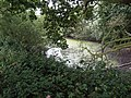 -2018-08-15 Pond next to Paston Way Footpath in the parish of Gimingham.JPG