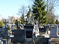 - Cmentarz Nowofarny - panoramio (22).jpg