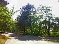 - panoramio (7067).jpg