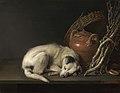 02. Dog at Rest Gerrit Dou.jpg