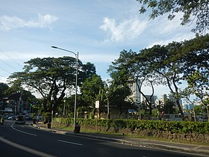 Makati Park and Garden - Image: 03558jf Old trees footbridges Makati Park Garden West Rembo, Makati Cityfvf 22