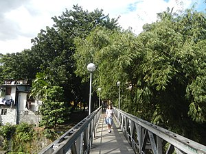 Bernardo Park - A footbridge connects both sides of the park over the Diliman (Lagarian) Creek