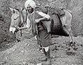 1890s pack mule and handler in Mussoorie, Uttarakhand, India.jpg