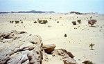 Aïr Dağları, Nijer