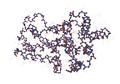 1D9C Bovine-Interferon-Gamma07.png