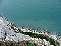 2005-07-26 - United Kingdom - England - Dover - White Cliffs 3 4887521411.jpg