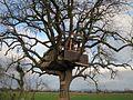 20121215Baumhaus Hockenheim2.jpg