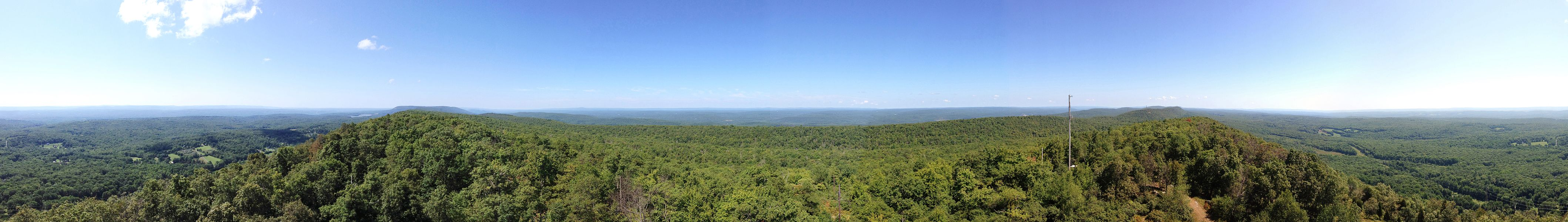 Catfish Fire Tower view