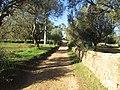2018-01-18 Farm track and erelict Irrigation channel, Várzea de Quarteira, Olhos de Água.JPG