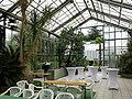 2018-06-18-bonn-meckenheimer-allee-169-botanischer-garten-mittelmeerhaus-01.jpg