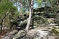 20210518. Sächsische Schweiz.Rauenstein.-052.jpg