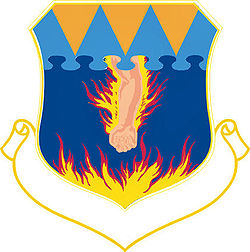 317thtroopcarriergroup-emblem.jpg