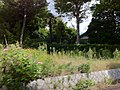 4 Chome Jindaiji Minamimachi, Chōfu-shi, Tōkyō-to 182-0013, Japan - panoramio (10).jpg