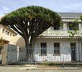8 Whitlock Street - Port Elizabeth-001.jpg