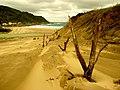 9286 - Kenting National Park - TOP TING (yct13909) - 102.jpg