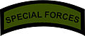 AFP Special Forces Tab (Subdued).jpg
