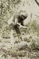 ASC Leiden - Coutinho Collection - C 34 - Candjambary, Guinea-Bissau - Unexploded bomb in Candjambary area - 1974.tif