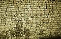 ASC Leiden - Rietveld Collection - East Africa 1975 - 05 - 037 - Detail of a Great Zimbabwe wall with lichen - Masvingo, Zimbabwe.jpg