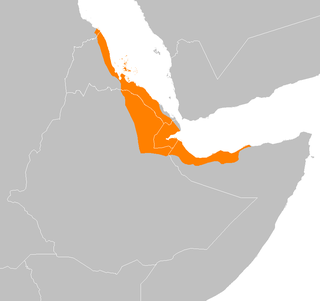 ecoregion near the Red Sea and the Gulf of Aden coasts