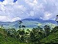A Cloudy mountain.jpg