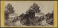 A View from Idlewild, by E. & H.T. Anthony (Firm) 2.png