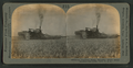 A combined steam harvester which heaps, thrashes and sacks, Calif., U.S.A, from Robert N. Dennis collection of stereoscopic views.png