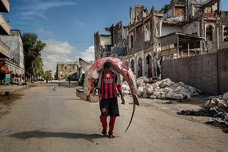A man carries a huge hammerhead through the streets of Mogadishu.jpg