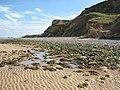 A pool on the beach - geograph.org.uk - 1478948.jpg