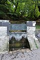 A sacred water spring from the Shuamta monastery grounds (30802623220).jpg