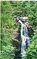 Aberfeldy Falls - geograph.org.uk - 970835.jpg
