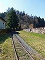 Abreschviller-Rails du petit train (1).jpg