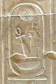 Abydos KL 18-08 n73.jpg