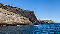 Acantilados de Heimaey, Islas Vestman, Suðurland, Islandia, 2014-08-17, DD 055.JPG