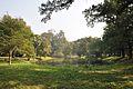 Acharya Jagadish Chandra Bose Indian Botanic Garden - Howrah 2011-01-08 9829.JPG