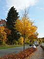 Achenbach, 57072 Siegen, Germany - panoramio (7).jpg