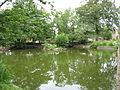Alderton village pond (geograph 2482259).jpg