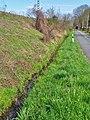 Am Wasserwerk Pirna 118711311.jpg