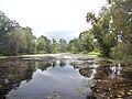 Amme jõgi 1.jpg