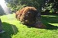 Anacortes - Causland Park 11.jpg
