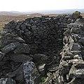 Ancient cairn on Garn Gron's main summit - geograph.org.uk - 1214497.jpg