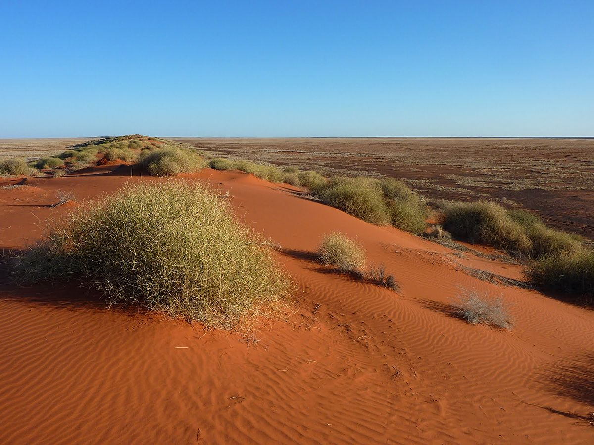 Simpson Desert - Wikipedia