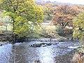 Angler on the River Nith - geograph.org.uk - 1553117.jpg
