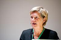 Anita Broden, parlamentariker fran Sverige, talar vid BSPC 20 i Helsingfor.jpg