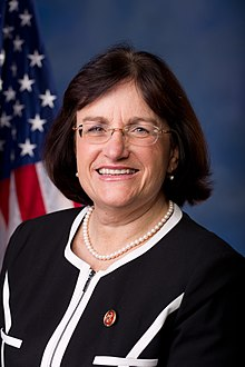 Ann McLane Kuster, Official Portrait, 113th Congress.jpg