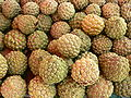 Annona squamosa P1190382.jpg