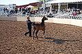 Arabianhorseshow1 1127 (4524756784).jpg