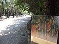 Arles Alyscamps 07.jpg