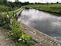 At Greenberfield Locks - geograph.org.uk - 532398.jpg