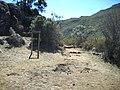 At the Terreirão^ - panoramio (1).jpg