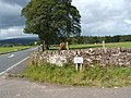 At the foot of Red Road - geograph.org.uk - 920159.jpg